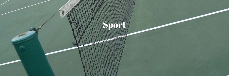 Tennis Court and net - Petar Stipanovic I.T. Guru, Social Media expert and philanthropist.